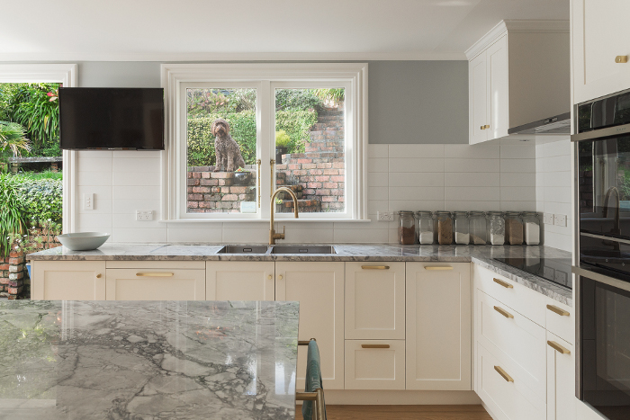 Proposed Kitchen Renovations